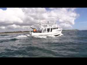 Shark nets deployed