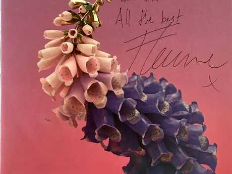 HIT: A vinyl cope of Flume's second album, Skin, autographed by the producer, has been donated to fundraise for Nudge Nudge Wink Wink second's birthday celebrations.