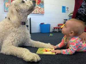 Nellie's helping struggling mums cope