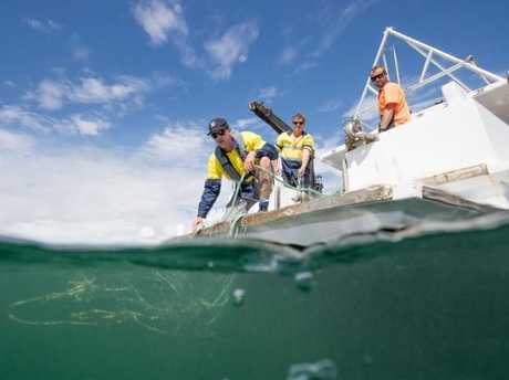 The nets hit the depths on the northern NSW coast. Picture: Luke Marsden
