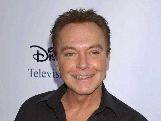 David Cassidy at the ABC Press Tour held at the Langham Hotel in Pasadena, CA