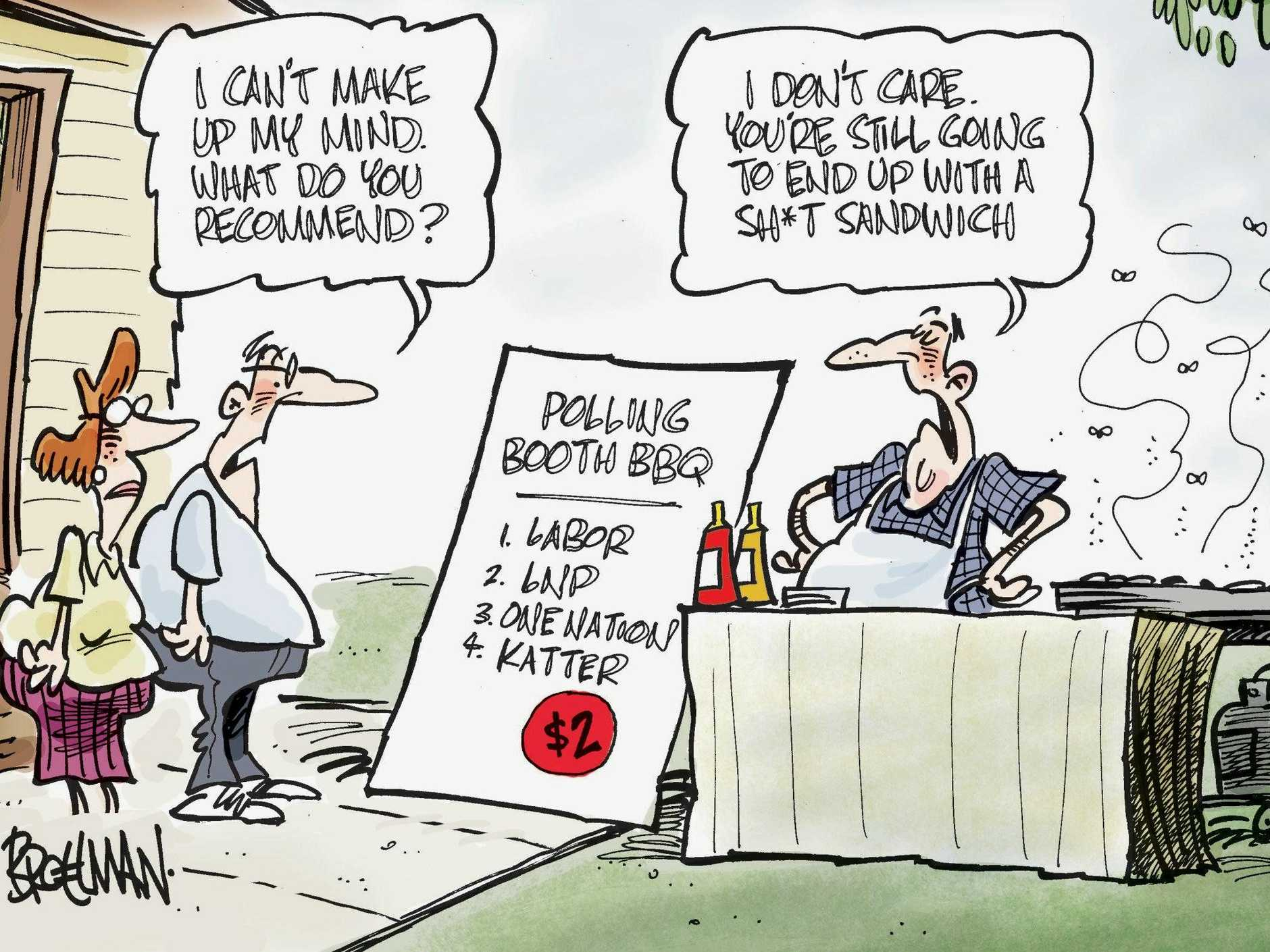 ALL THE SAME?: Peter Broelman's election day cartoon.