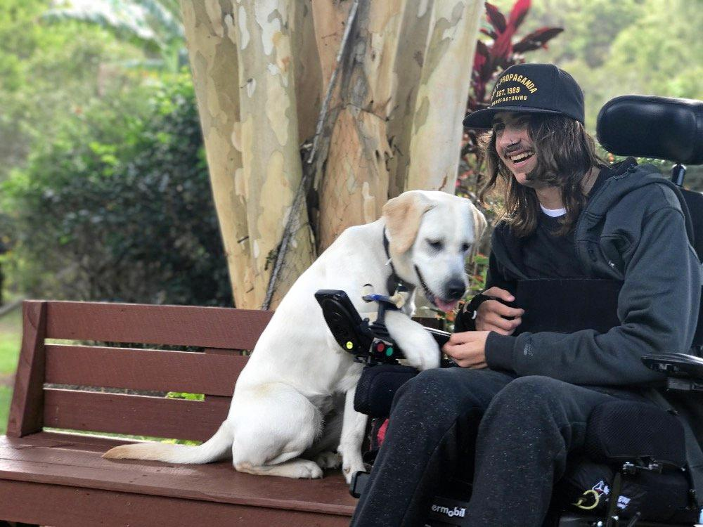 Ethan Hassett, 18, pictured with his assistance dog Pip.