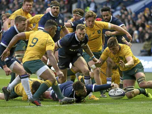 Scotland's Ali Price dives in to score in the demolition of the Wallabies at the weekend.