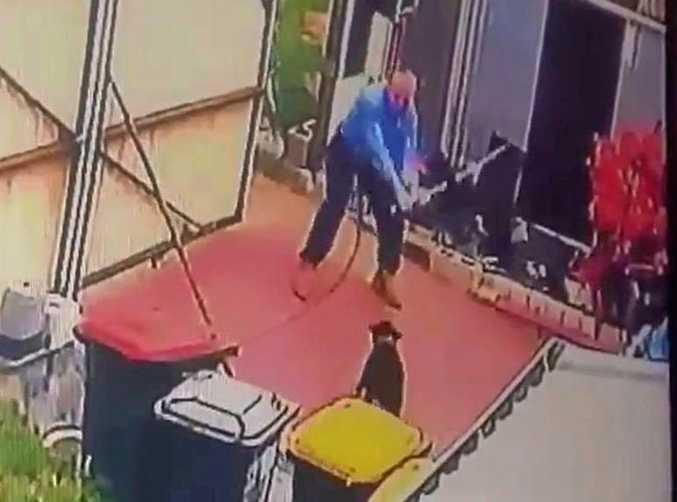 A snap shot of the video shows the officer mid-swing as he hits a dog with the catch pole.