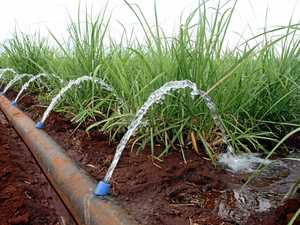 MDBA cracks down on water theft