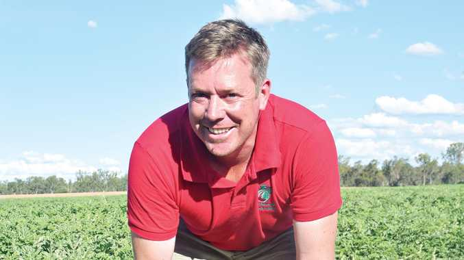 YUM: Terry O'Leary is excited to start harvest soon.