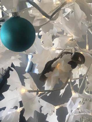 Green tree snake found in Jessica Alexandra's Christmas tree at Brinsmead