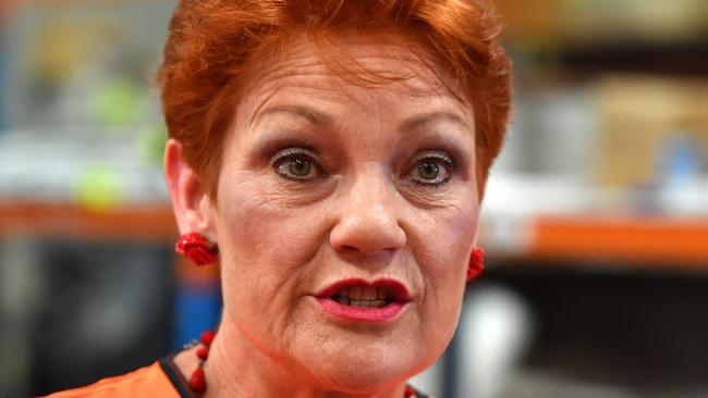A new report has revealed the extreme beliefs of supporters of Pauline Hanson's One Nation party. Picture: Mick Tsikas/AAP