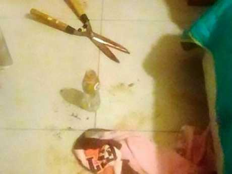 The garden shears authorities believe were used in the alleged attack. Picture: CEN/australscope