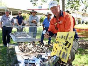 Pest management workshop to help landholders