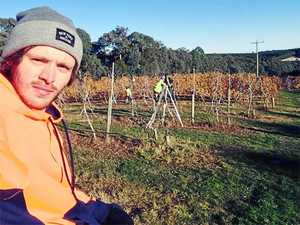 Backpacker dubs Woolgoolga farm 'modern day slavery'