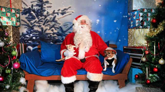 FURRY FESTIVITIES: Santa will be available for photos with residents and their pets in support Friends of the Pound at Petbarn in Tweed Heads South from this weekend.