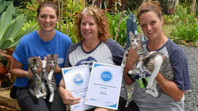 RECOGNISED: Courtney Ey, Nicole Cleary and Shanna Waugh with their award for Queensland RSPCA centre of the year.