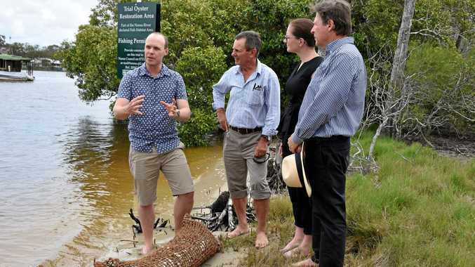 REEF SAVIOURS: Dr Ben Gilby of USC,  NPA's Bryan Walsh, NBRF's Clare Cartwright and Mayor Tony Wellington withan oyster reef