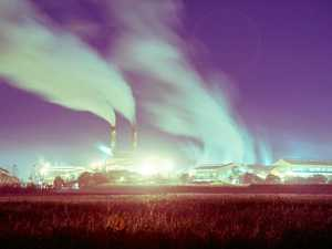 Reality check from Mackay Sugar's new chairman