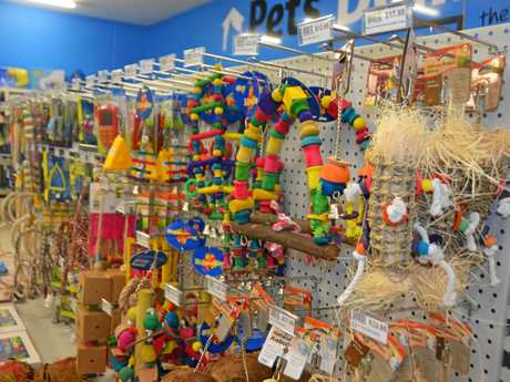 Plenty of colourful toys to keep pets entertained.
