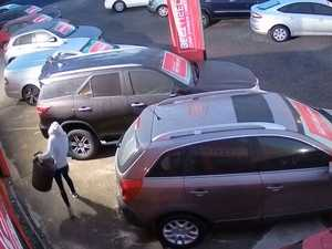 CCTV: 'Disaster' theft cripples business, puts staff at risk