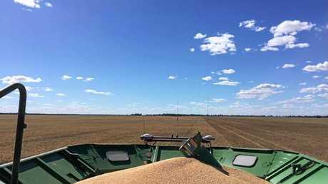 Harvesting on Retreat Station.