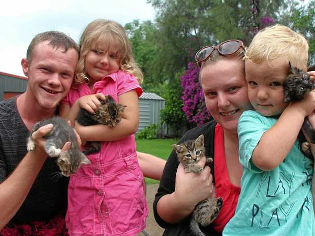 CAN WE KEEP THEM?  Joe Watts, Addison, Tamika Kirby and Masyn are seeking to rehome Sophie's kittens and hope to adopt the grown-up cat themselves .