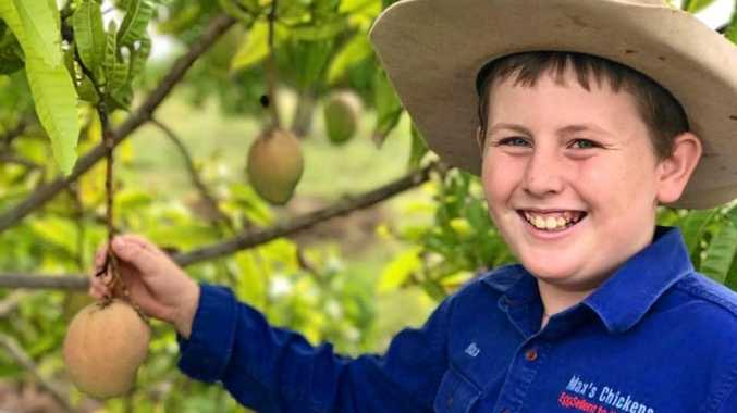Mount Larcom's Max Cosgrove from Max's Chicken's now sells organic bowen mangoes too.