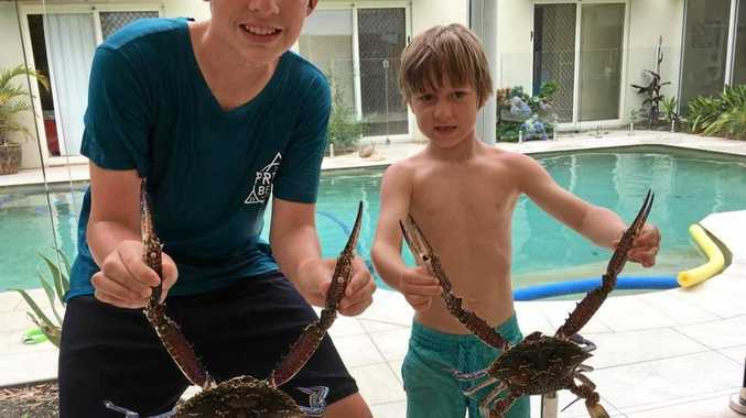 The Gale boys with a few sandcrabs.