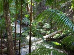 Fraser Island anniversary