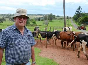 Dairy farmers slam inquiry