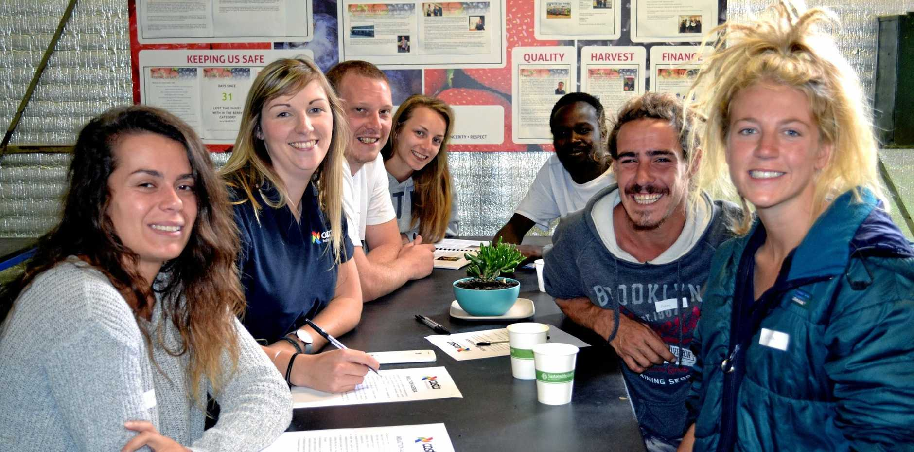 OPPORTUNITY: Costa's Sarah Willder (second from left) at an induction section with new workers who have come from Caloundra in Queensland, and countries including France and Scotland.