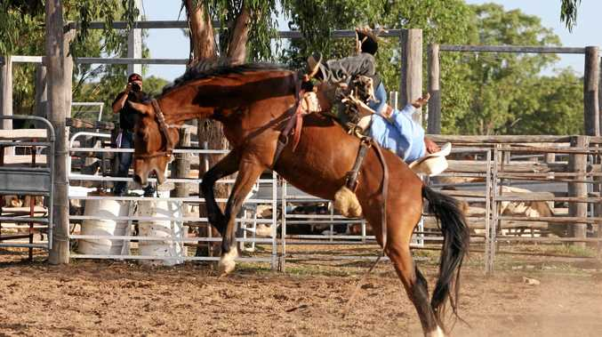 WILD RIDE: Angus Mitchell hangs on for dear life at a rodeo event.