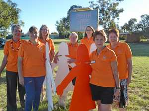Violence against women, Zonta says no
