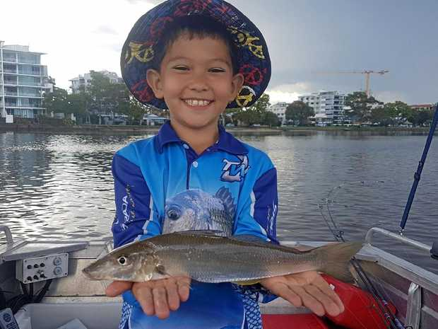 HAPPY DAYS: Keen young Angler, Xavier Chong was happy to land this 33cm whiting in the dirty water in the lower Maroochy River.