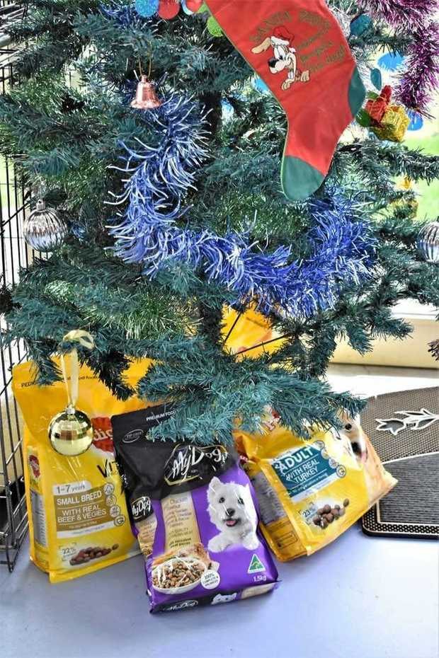 IN NEED: Total Dog Grooming in Warwick has set up a Christmas tree for donations of food for Southern Downs ARK.