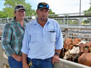 CQ couple's inside look at cattle industry during first sale