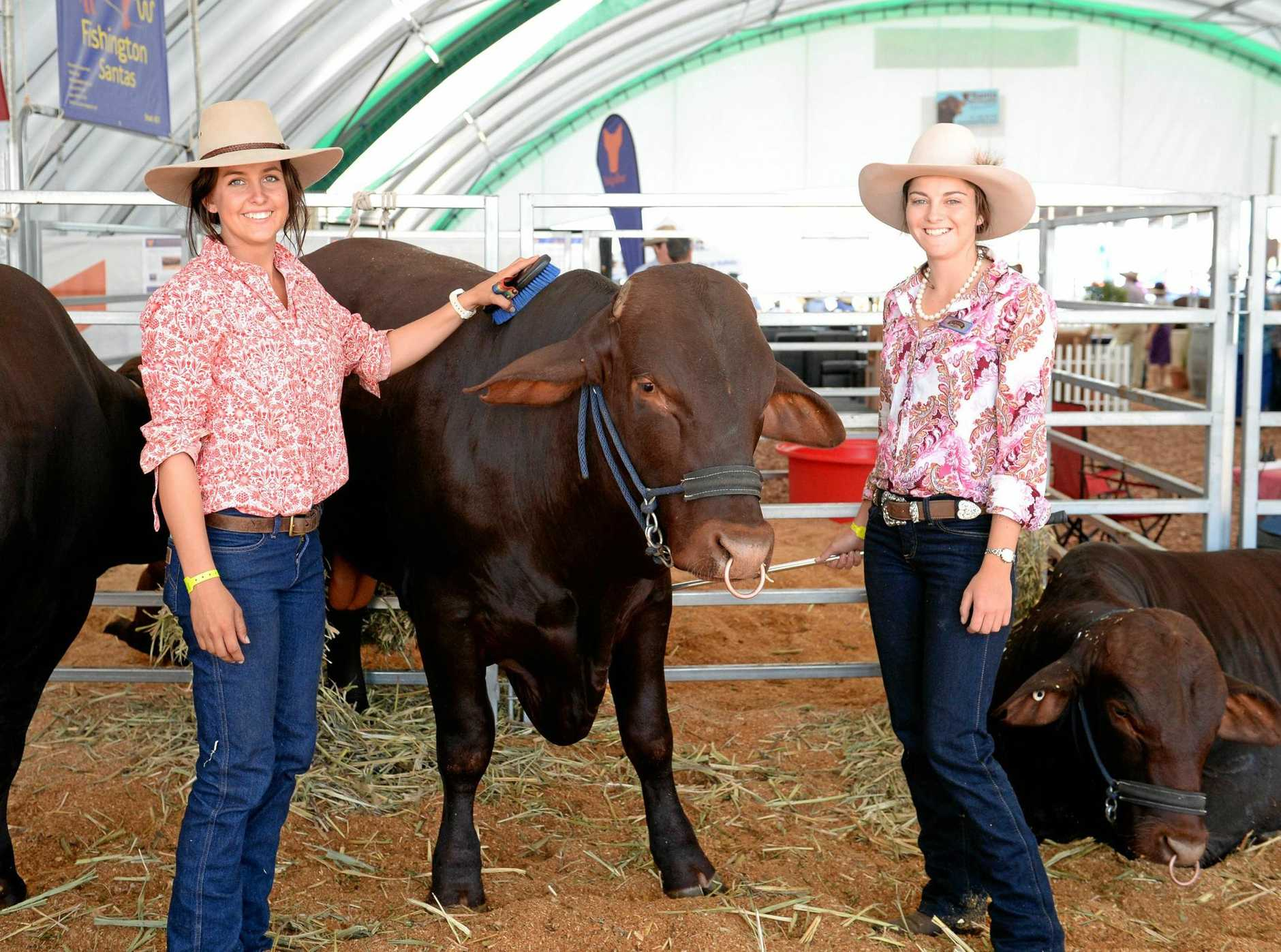FUN TIMES: Molly Kruger and Maddy Page at Beef Week 2015.