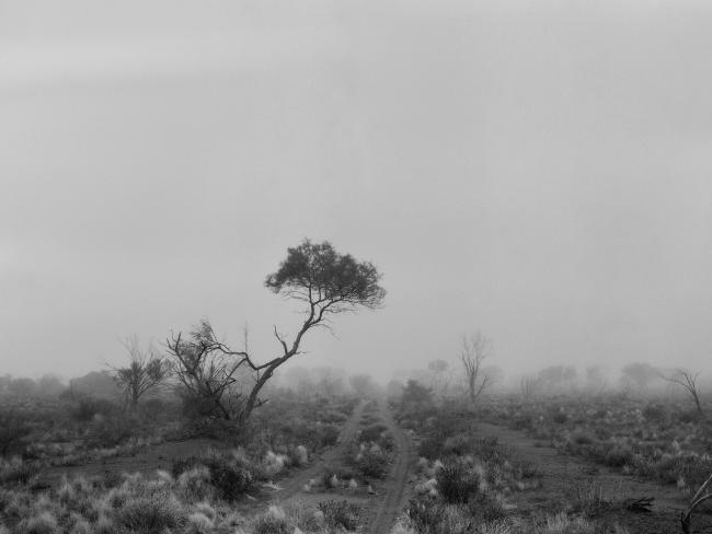 Nuclear tests carried out at Maralinga have had a devastating health impact on communities still in the area.