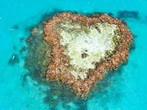 MUST-SEE: Heart Reef, in the Great Barrier Reef, will be popular with Chinese visitors.