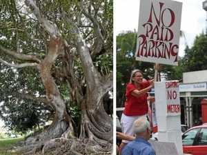 Save 200-year-old fig tree, or protest paid parking?