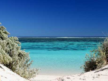Who can so no to Ningaloo Reef?