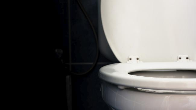 The expensive toilet block has caused a stir. Source: iStock.