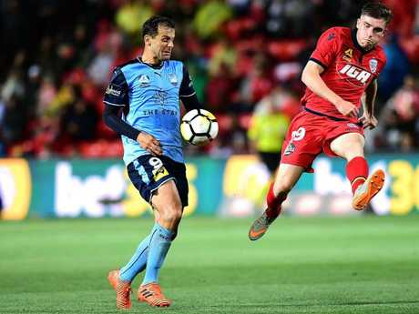 Ryan Strain of Adelaide United. (Photo by Mark Brake/Getty Images)