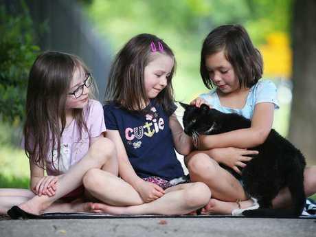 Kite Honeyman, Lux Honeyman and Azriela Cadiogan with Friday the cat. Picture: Sam Ruttyn