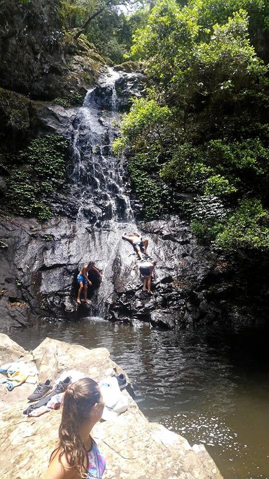 Araucaria Falls near Goomburra is a beautiful spot.