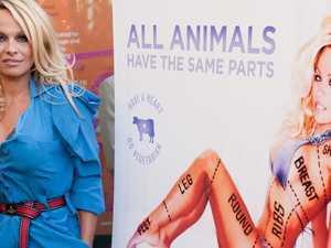 Pamela Anderson's Manus outrage