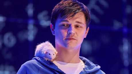 Joshua Jenkins in The Curious Incident of the Night-Time.
