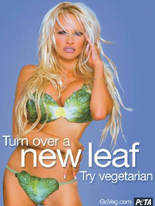 Pamela Anderson appear PETA campaign