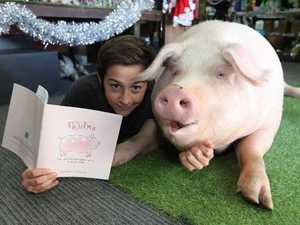 Wilma the pig publishes her own book
