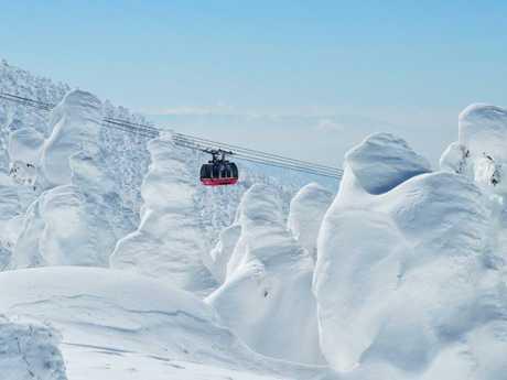 The famous Japan snow.