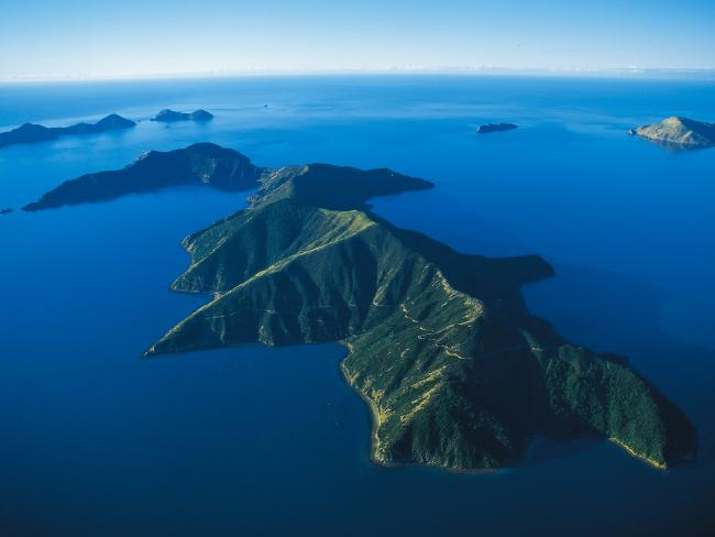 Forsyth Island in New Zealand is huge, and it could be all yours.