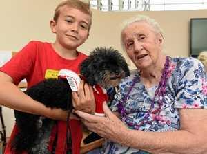 Refuge animals bring joy to our oldies